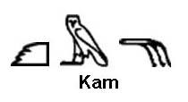 kam-v21